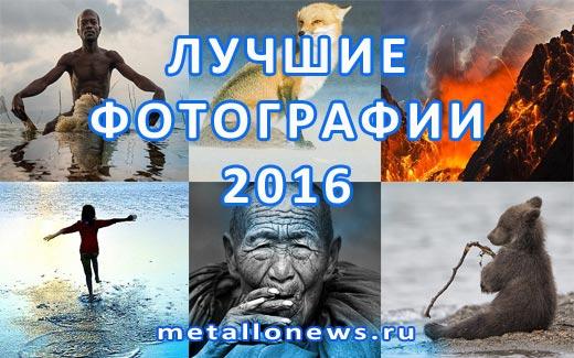 Лучшие фотографии 2016